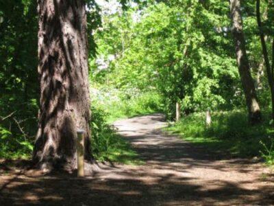 falsterbo stadspark