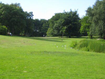 Beijerspark1