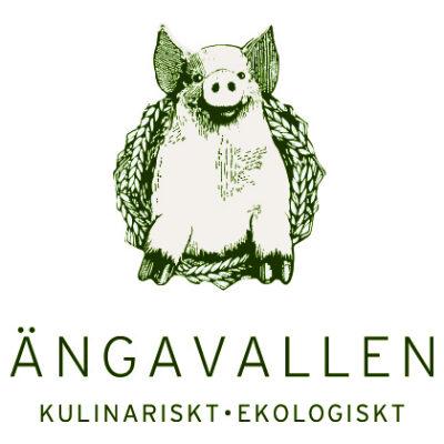 ängavallen logo